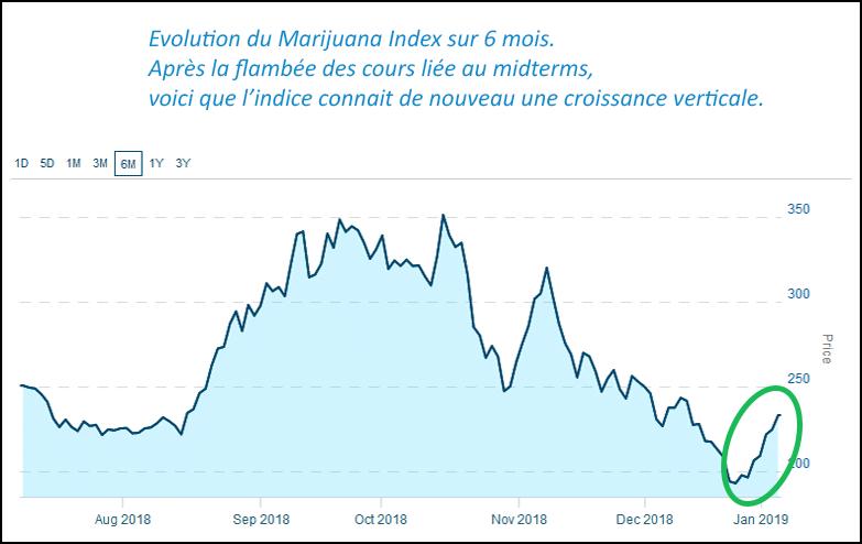 graphe bourse marijuana index