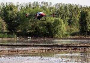 drone seme riz plantations